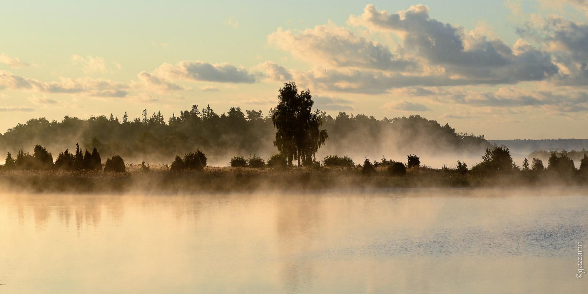 Baum auf Insel (3), Schweden